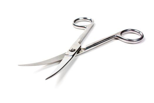 Chrome scissors