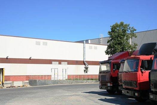 red lorries on a background of a white warehouse