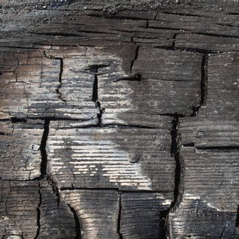 Burned wood