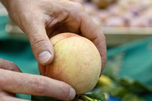 Touch a peach