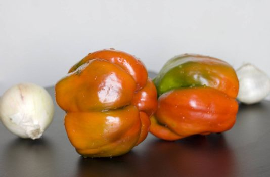 Still life of red peppers with garlick