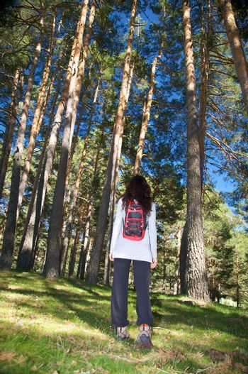 grey jersey woman at forest