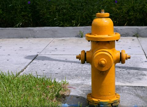 american hose hydrant, urban fire prevention