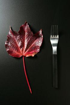 Metaphor, healthy diet low calories colorful vegetarian leaf meal