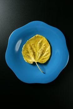 Metaphor, healthy diet low calories vegetarian leaf meal