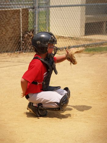 young baseball catcher ready to play behind the plate