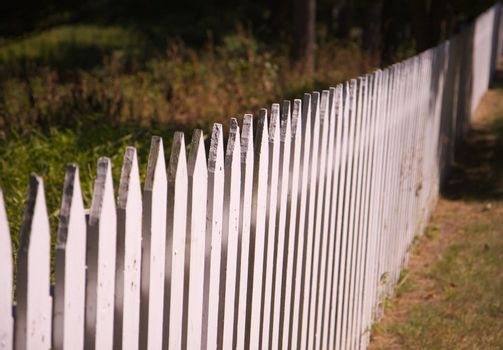 Spiked White picket fence