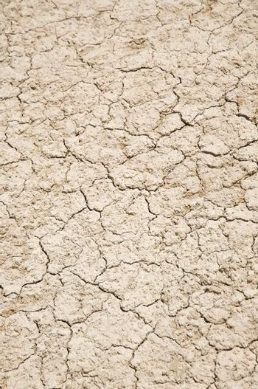 close up soil