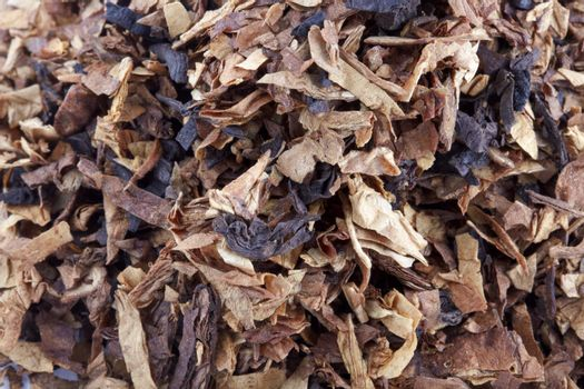 Cut and dried different sorts (kinds) tobacco leaves. Tobacco for smoking with pipe.