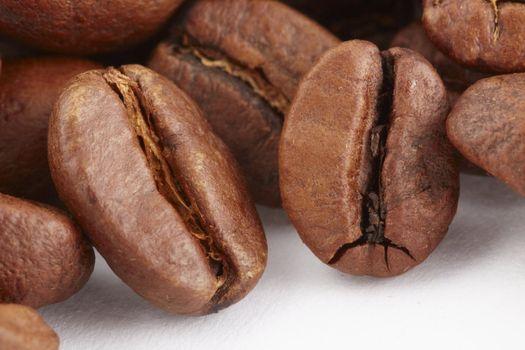 Macro shot of coffe bean