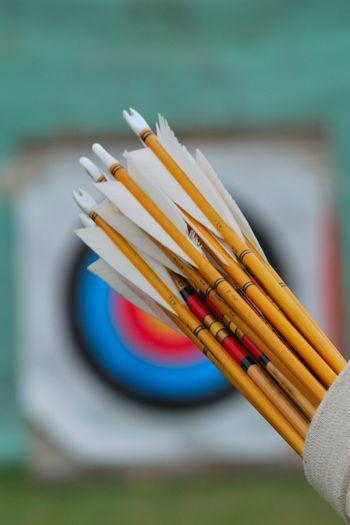 Wooden arrows in quiver with target in background