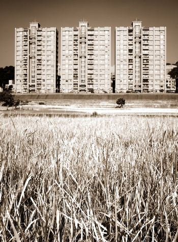 cityscape of apartments with grassland