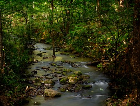 Burbling brook