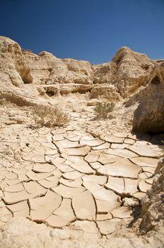 soil at the desert