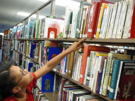 Girl looking for a library book