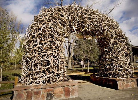 Stack of Antlers from the Elk reserve
