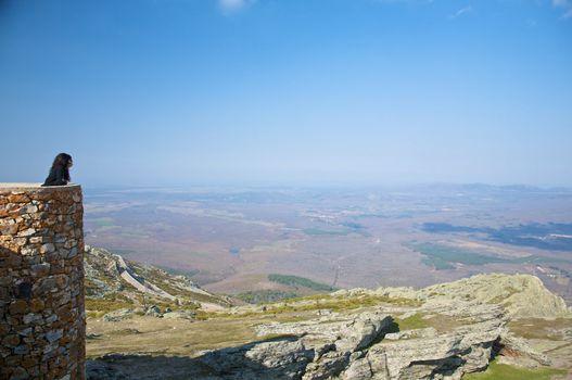 landscape at salamanca