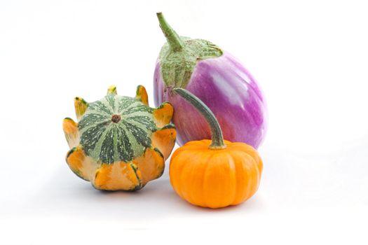 two squash and eggplant