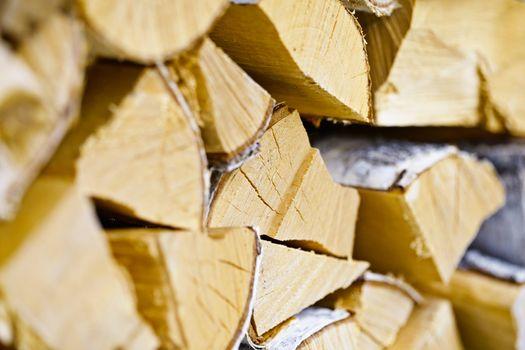 Birch logs in woodpile