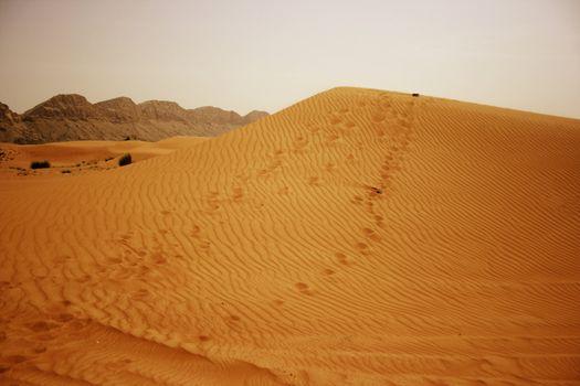 Desert of Bahrain