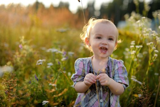 Little smiling baby is in a meadow