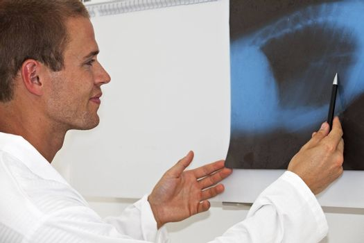 young male doctor reading a x-ray