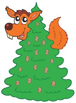 Squirrel on coniferous tree