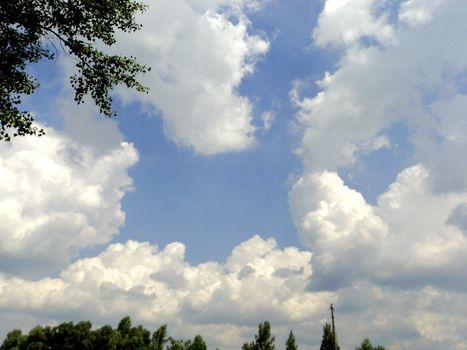 Blue sky with verdure