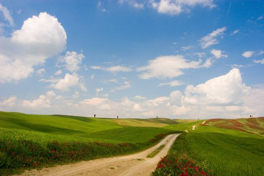 Countryside rural dirt path. Tuscany, Italy.