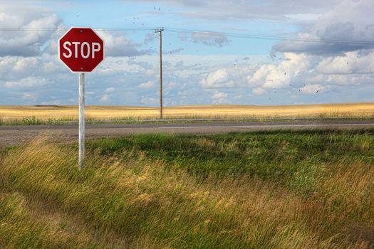 Rural stop sign on the prairies
