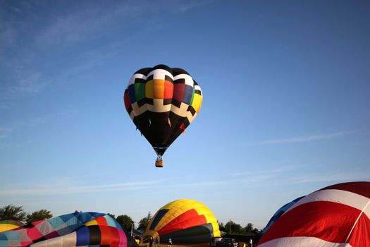 Hot air balloons getting ready to take off