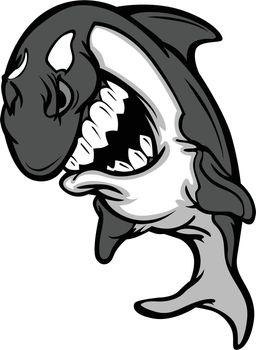Killer Whale Mascot Cartoon