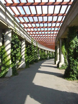 A avenue of columns