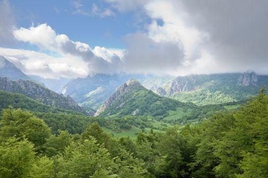 beautiful valley in Picos de Europa