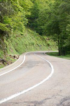 curve at Picos de Europa mountains