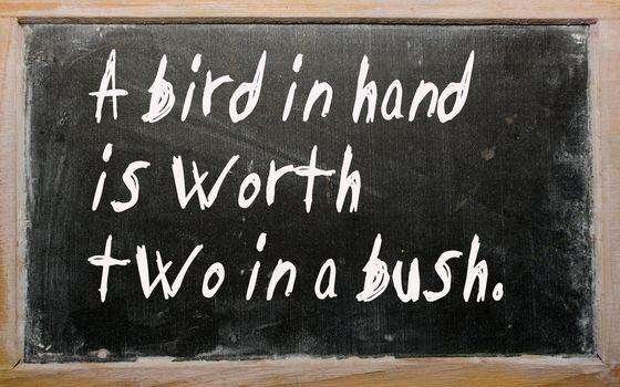 """Blackboard writings """"A bird in hand is worth two in a bush"""""""