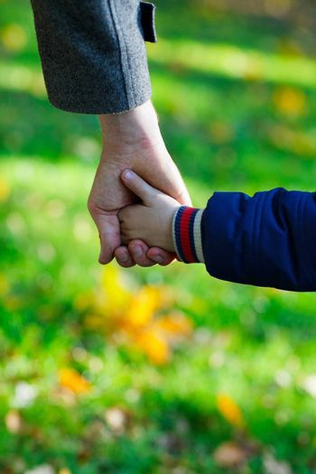 Close up of father and son hands outdoors at autumn day