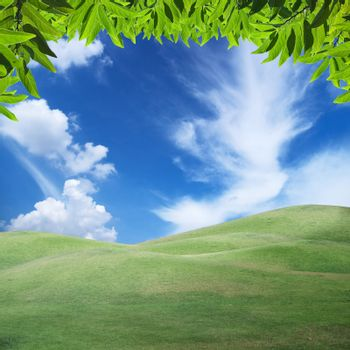 Beautiful sky over field of green hill with green foliage
