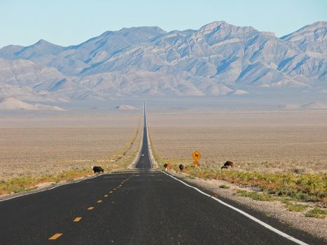 Extraterrestial Highway, 2005