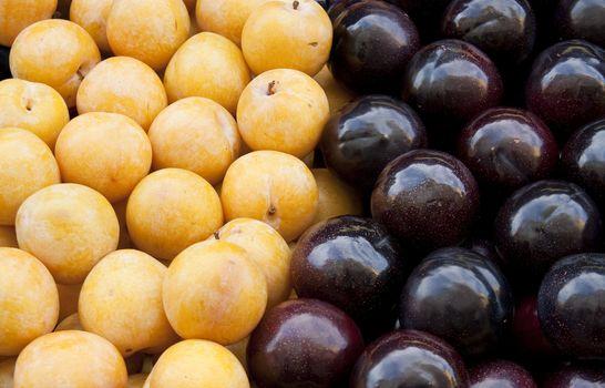 yellow and black plum