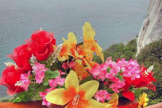 Flowers on the Sea, Croatia, May 2003