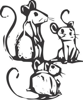 Three mice sitting together listening for something.