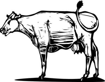 Woodcut style image of a common dairy cow.