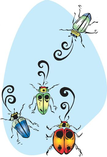 Four colorful beetles gathering to sing and chirp.