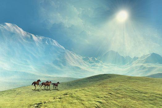 A herd of wild horses run under beautiful skies.