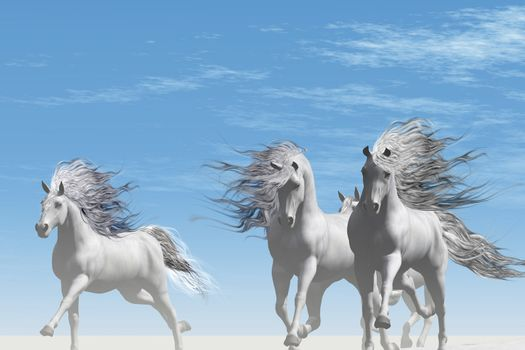A herd of Andalusian white horses gallop together on the white sands of a desert.