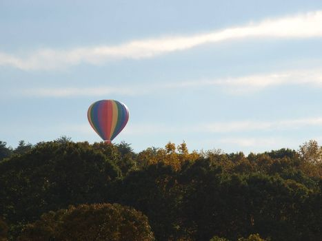 Hot air balloon festival in rural North Carolina. Rising over the trees