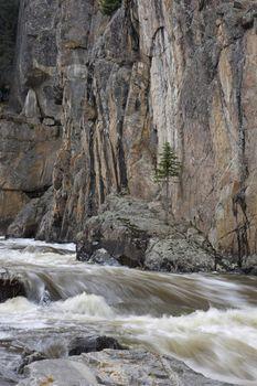 mountain stream in a deep canyon