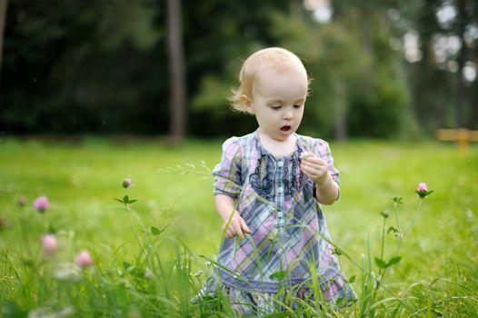Little baby in a clover field