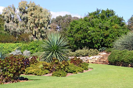 Formal Garden with Beds of Succulent Plants